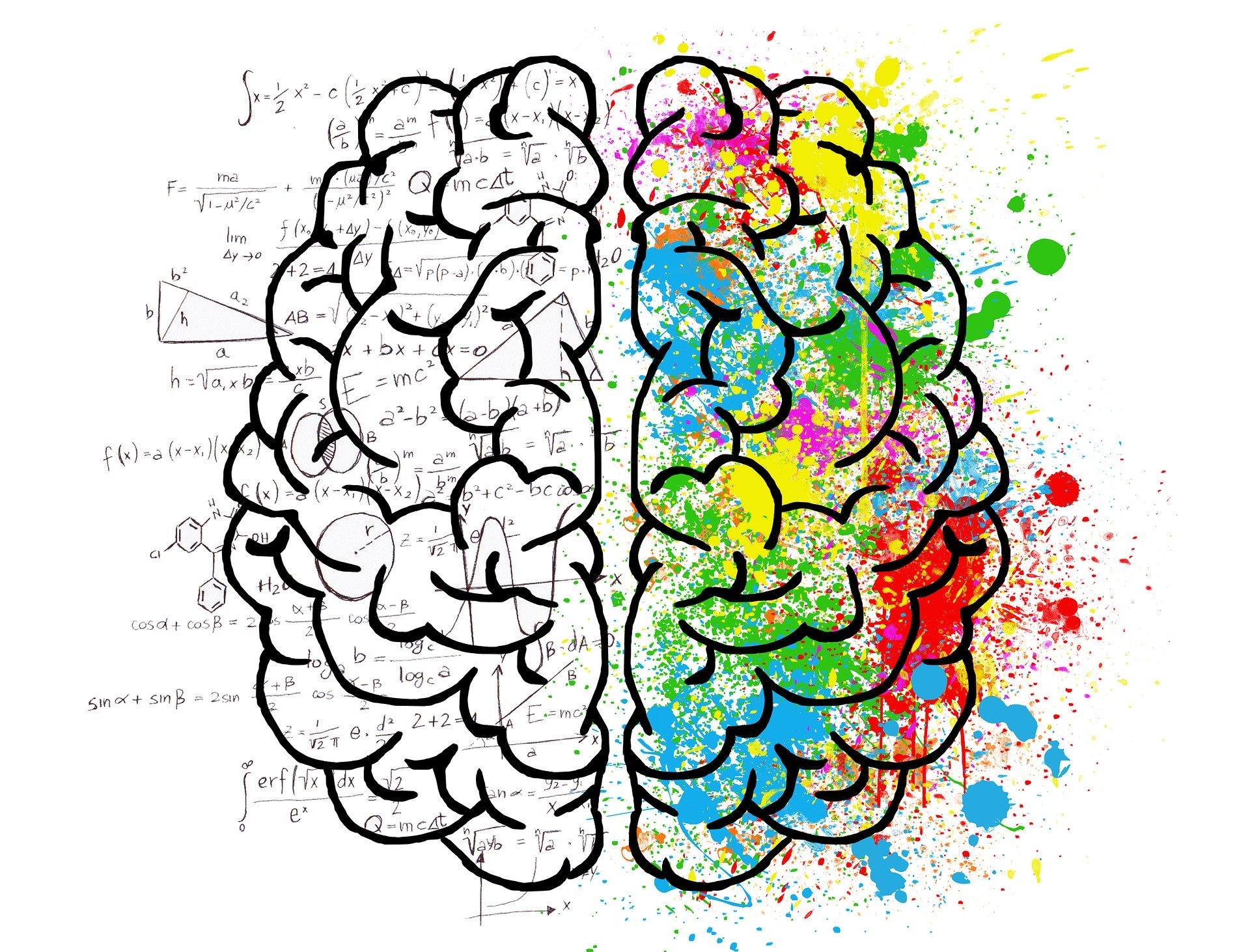 Può una lingua modellare il modo in cui pensiamo?